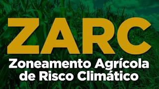 O ZARC indica as melhores datas ou períodos de plantio/semeadura por cultura e por município