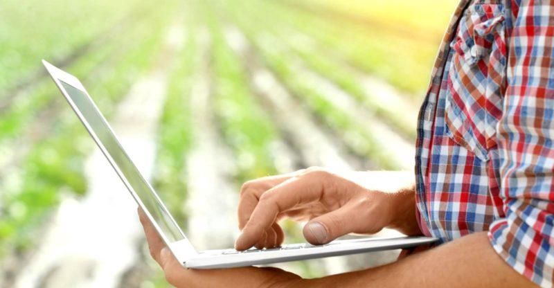 Segundo o STJ, o produtor rural, por ser empresário sujeito a registro, está em situação regular ao exercer atividade econômica agrícola antes de sua inscrição, já que o registro é facultativo. Foto: Divulgação