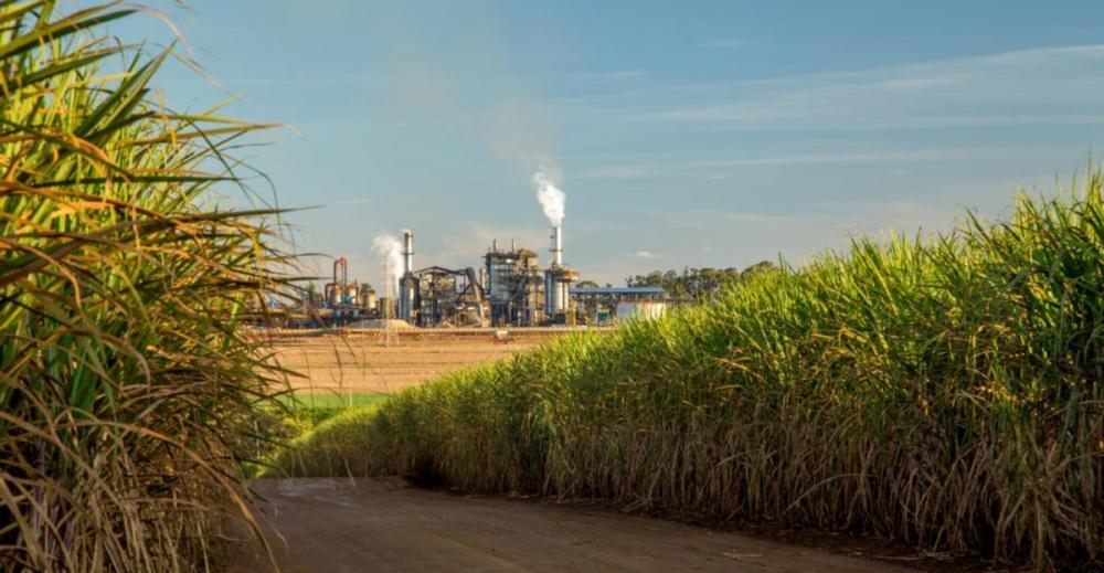 O setor sucroenergético, que antes mostrava otimismo frente à safra 2020/21, mudou suas expectativas com a chegada do novo Coronavírus e com a guerra de preços entre Rússia e Arábia Saudita no mercado do petróleo.