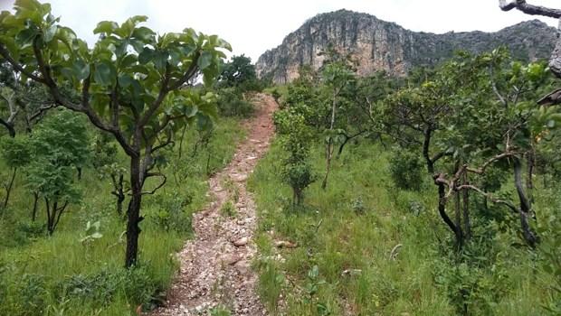 Prática ilegal de motocross é uma atividade que provoca degradação da vegetação e do solo, além de ocasionar processos erosivos e assoreamento de córregos | Foto: Semad